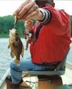 FISHING ILLINOIS STRIP PITS