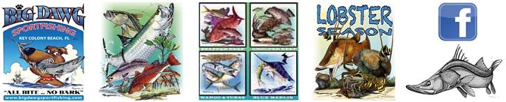 Marine & Wildlife Artist/Illustrator Joe Suroviec