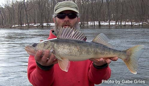 Nh stocking of walleye in moore reservoir odu magazine for Vermont fishing report
