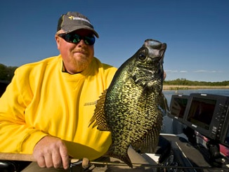 Weighty Tips for Fishing Ultra-Lite Crankbaits