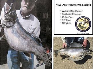 Massachusetts' Quabbin Reservoir Produces Record Trout