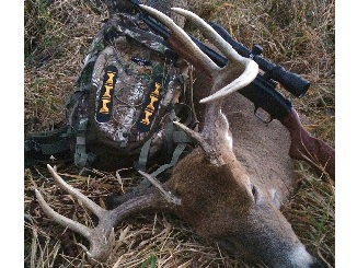 NEW Wildgame Innovations Trophy Tape