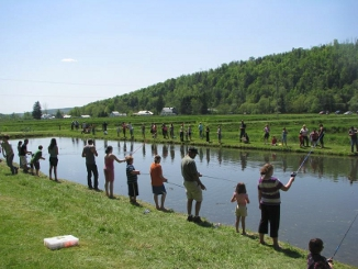 Angling tips to help trout and salmon beat the heat