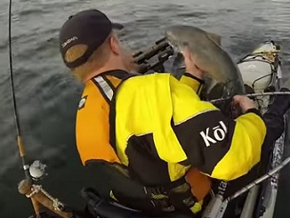 Cracking Action for Columbia River Chinook Salmon