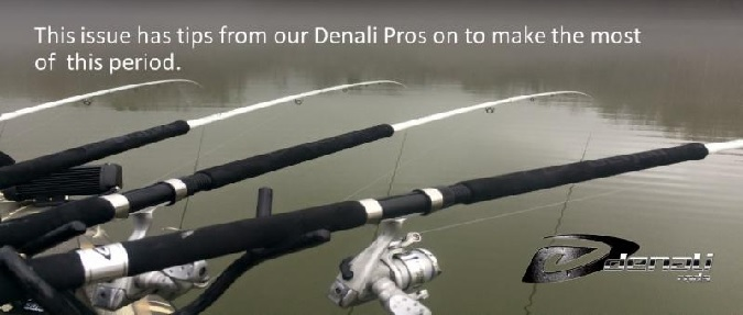 Denali Rods Newsletter October 2016