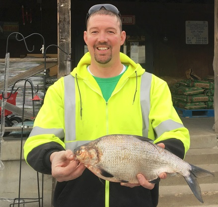 State record gizzard shad landed in missouri odu for Missouri state record fish