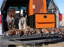 New Gun Vault and Dog Kennel Hunting System