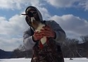 Surprise! Fisherman pulls bird (not fish) from ice