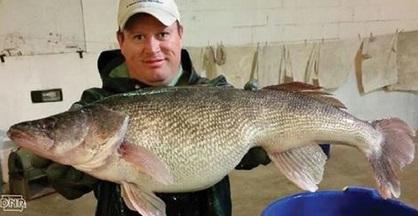 Iowa record setting spring walleye netting season for Walleye fishing in iowa