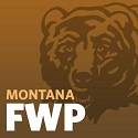 Montana proposes to triple wolf harvest near Yellowstone