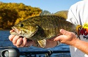 5 Best Smallmouth Destinations