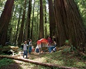 Tips for a Happy, Successful Camping Trip