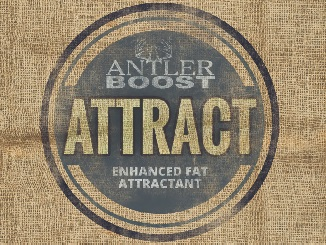 Antler Boost Introduces Attract