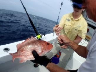 Atlantic Red Snapper Season Sucks? You Bet!