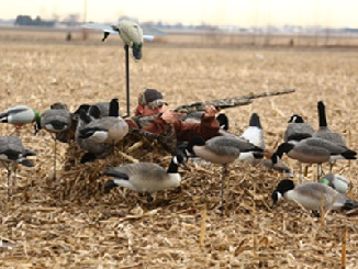 The Deluxe Man Cave Layout Blind For Waterfowl Hunters