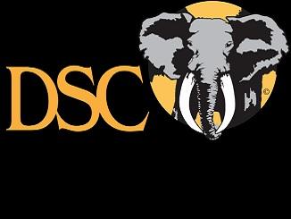 DSC Logo 326