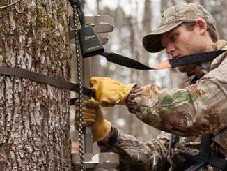 QDMA-Shooting for a Safe Deer Season