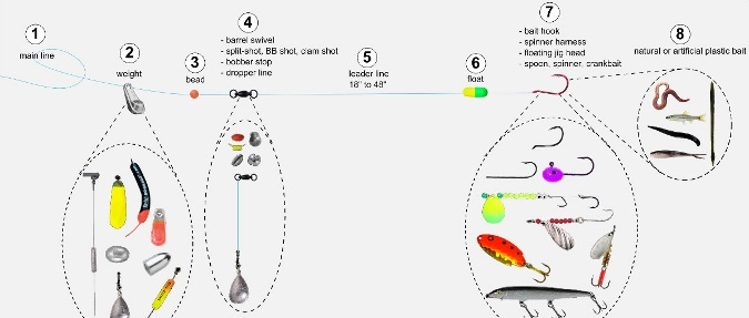 Walleye Fishing Lindy Rig Diagram And Tips