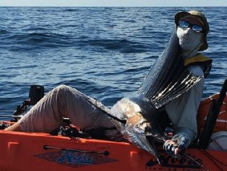 So You Want to Catch a Sailfish from Your Kayak