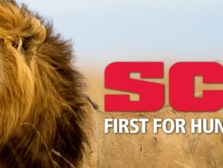 USFWS Decision on Importation of Lion Trophies from South Africa