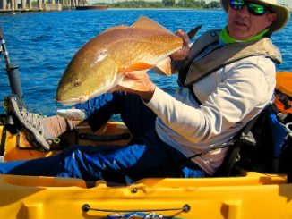 Fluorocarbon - fishing necessity or unnecessary expense