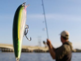 Heat Up Your cold Water Action With Jerkbaits