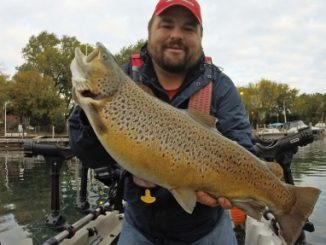 Micro Baits, Mega Results For Your Next Brown Trout Trip