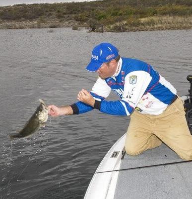 Tournament pro clark reehm likes floating jerkbaits for for Bass fishing jerkbaits