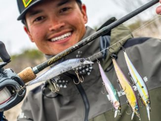 Megabass USA, How to choose jerkbait colors