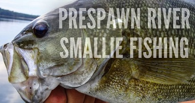 Get Ahead of the Pre-Spawn River Bass