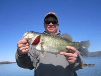 The Truth Around Bridge Fishing