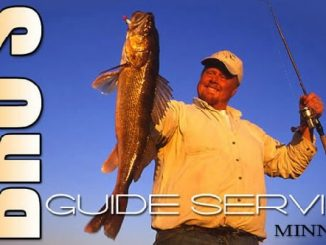 Walleye Seminars By Brian Brosdahl