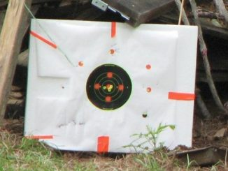 A back yard 22 range