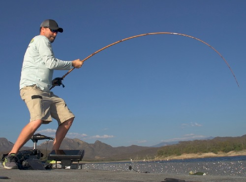Crank Without Limits, Legend Glass | OutDoors Unlimited