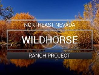 Wildlife Habitat Protected, Access Improved in Nevada