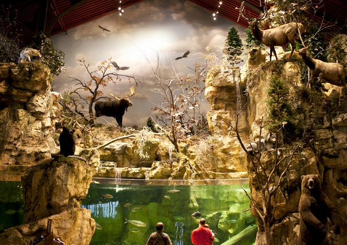 Record Fish Calls East Peoria Bass Pro Shop it's New Home | OutDoors