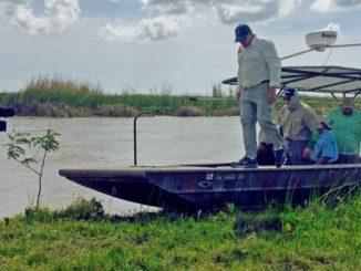 Reversing Land Loss and Improving Fish Habitat in the Bayou