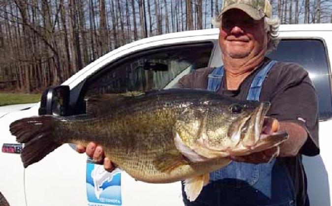Second 15 pounder for sharelunker program caught for Caddo lake fishing report