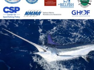 Senate Commerce Committee Advances Billfish Conservation Act