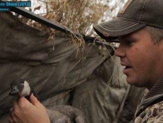 DU TV this week: epic goose hunting from Canada