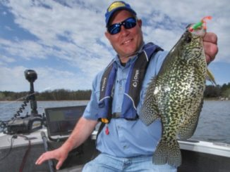 Cabbage Crappie Patterns