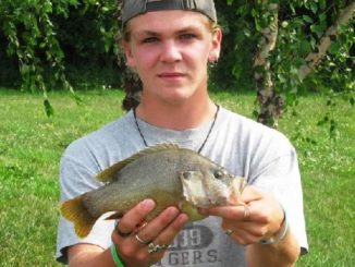 Greentop angler catches state-record green sunfish