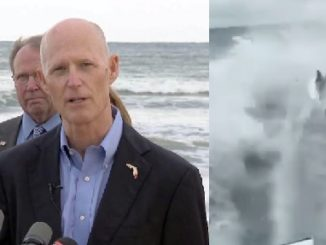 Gov. Rick Scott wants regulations checked after disturbing shark-dragging