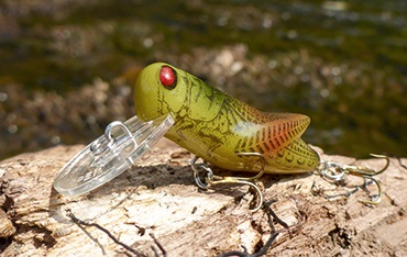 Prime Hopper (grasshopper) Fishing