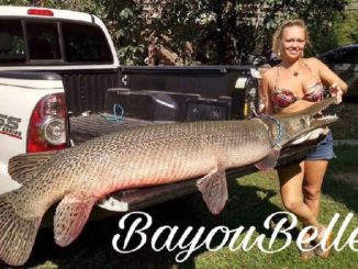 Bayou Bell Queen of the Gar Fishermen