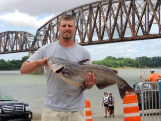 Catfish as Big as Volkswagens by Ron Presley