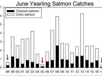 Ocean conditions for salmon headed to sea this year are very poor, according to recent NOAA Fisheries research surveys, and have a high likelihood of depressing salmon returns to the Columbia River in the next few years.