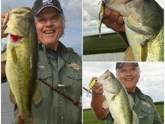 Using My Blitz To Score A Few Fish