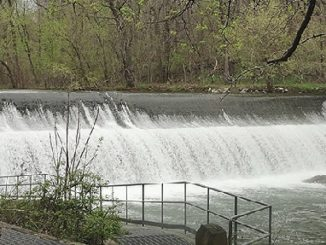Bloede Dam removal