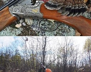 Grouse and Woodcock Hunts